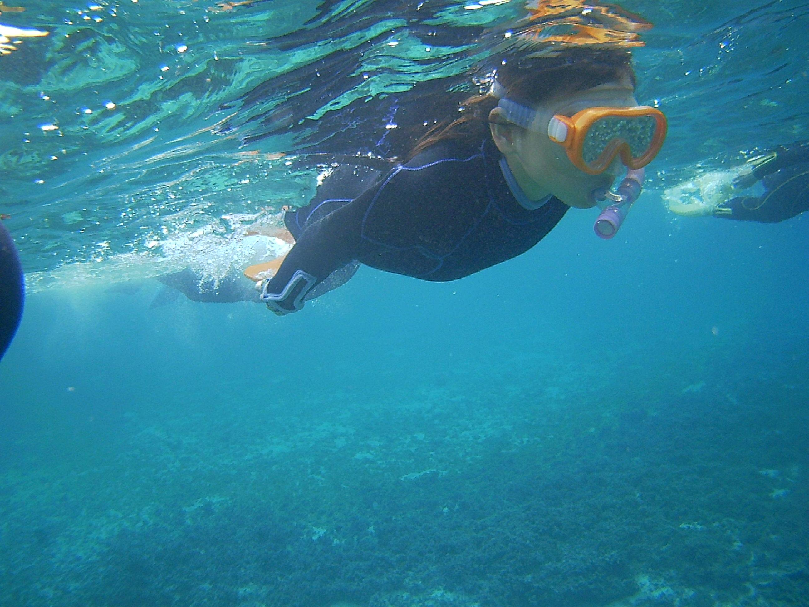 アヤナちゃん、余裕の泳ぎです