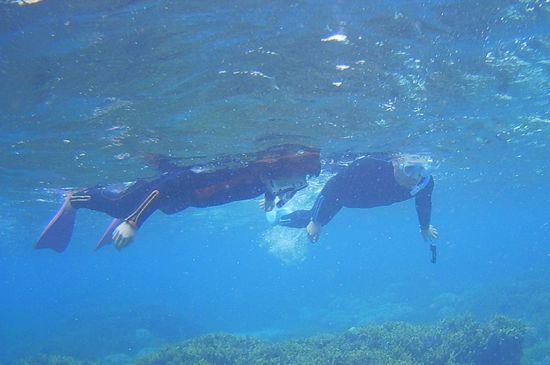 K山さん、泳ぎ回っています。