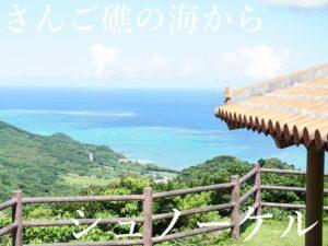 石垣島旅行、観光プランを考える際のご参考に