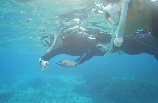 水中写真を楽しむお父さん