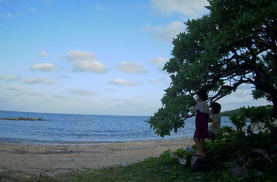 海を眺めるのにうってつけの場所