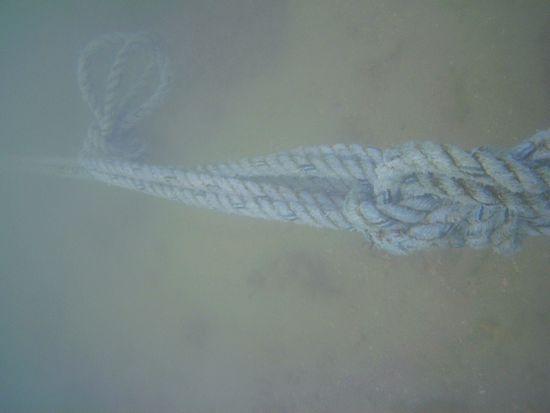 岸壁からのロープに一気にテンションを