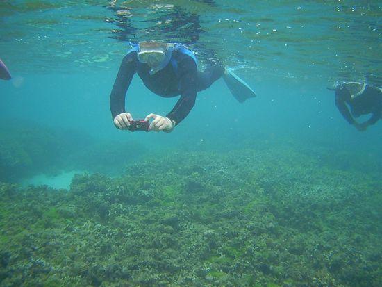 水中撮影に没頭のS藤さん