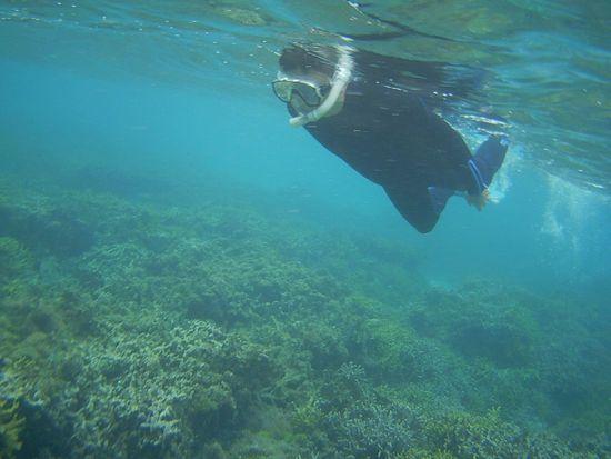 O木さん泳ぐフォームが変わってきていますね