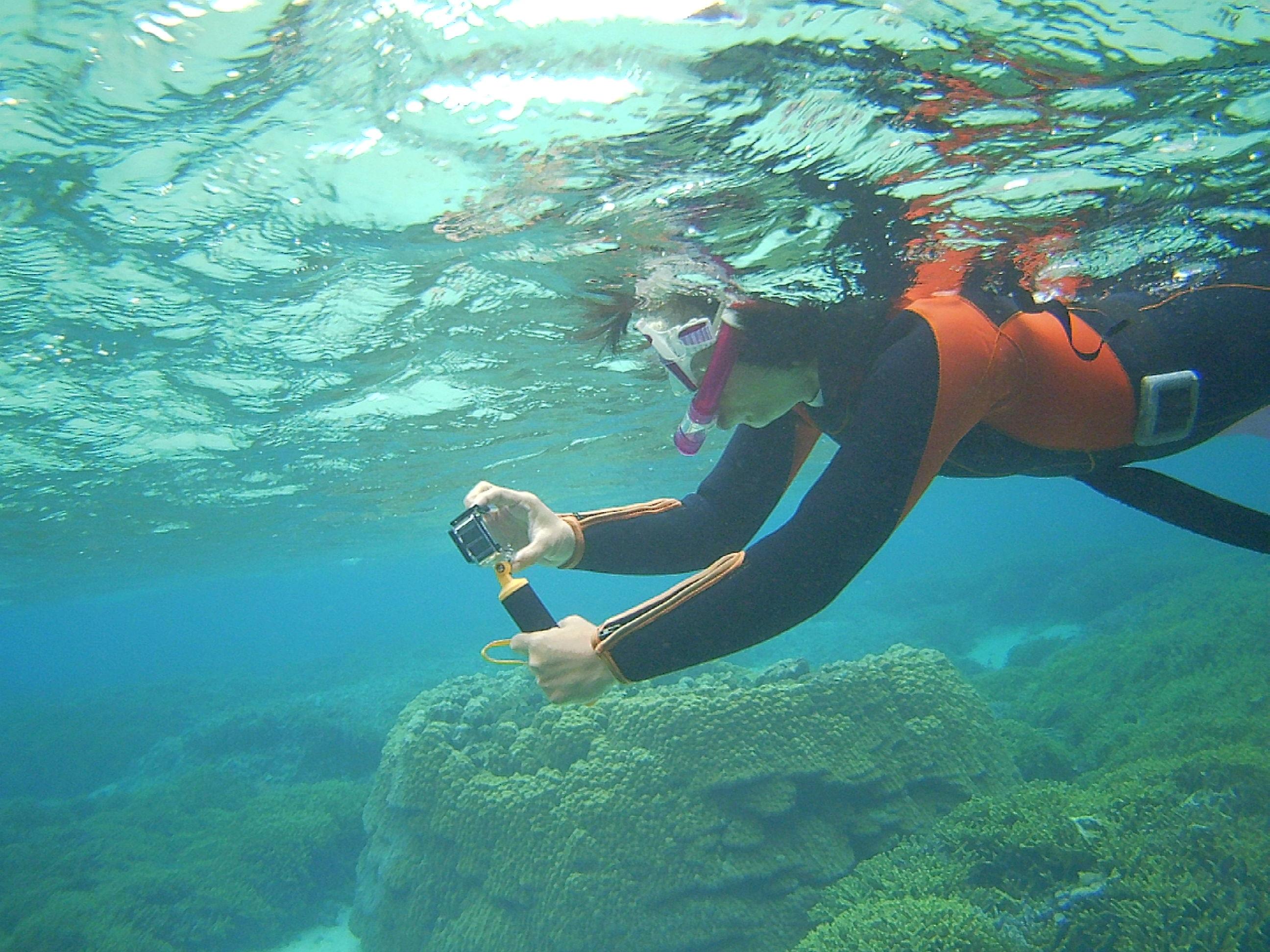 水中撮影開始のN島さん