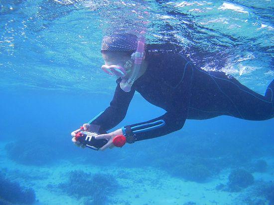 水中カメラで撮影を楽しんでいます。