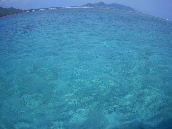 透明度抜群の海です