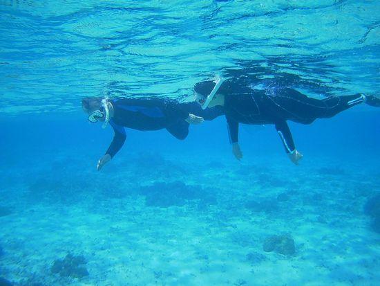 二人並んで泳いでいます。