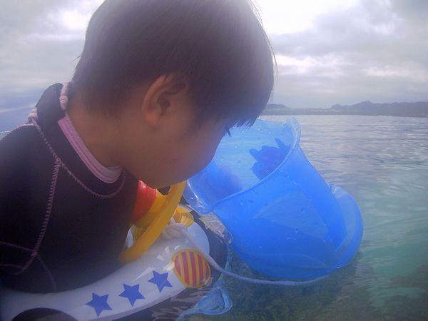 ユイキ君、怖がりなら水中観察