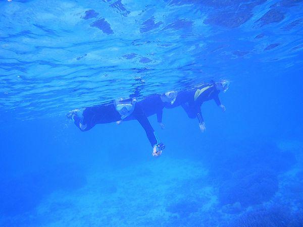 透明度抜群の海です♪