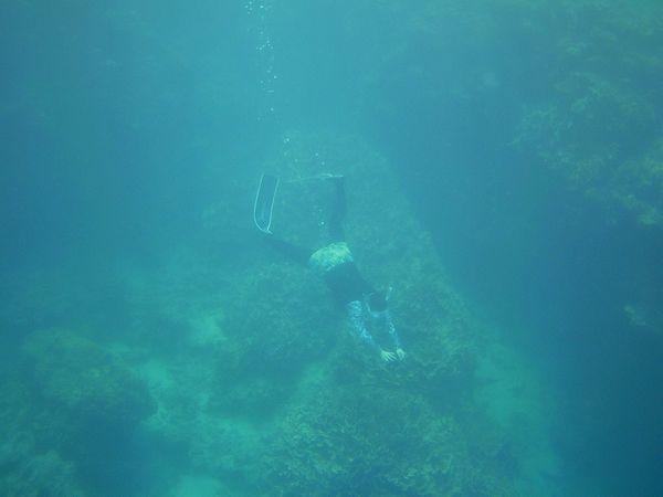 ロングフィンで快適シュノーケル