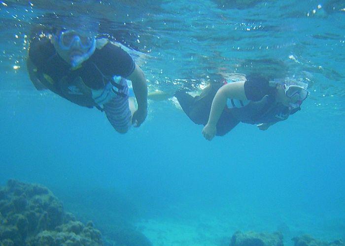 早朝でも水中世界は十分きれいです