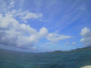 久々の体育会シュノーケリングツアー!波に負けず水中観察♪