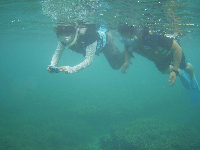 お父さんもお母さんも石垣島の海を満喫です