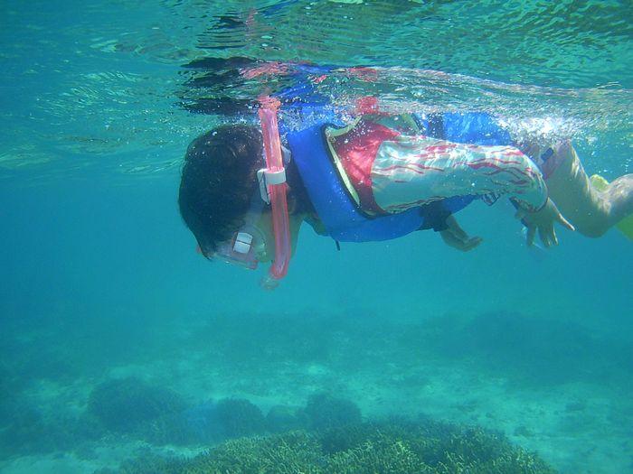 人魚泳ぎを披露しているネネちゃん