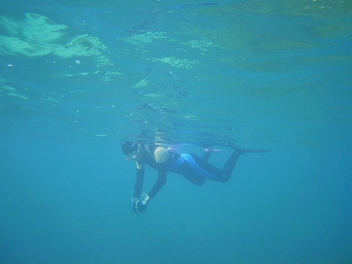 水中世界を満喫楽しんでいます