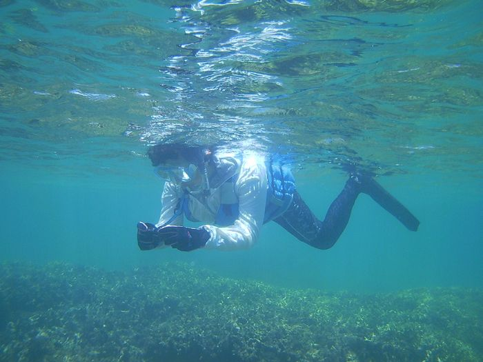 水中カメラを楽しむ奥さん