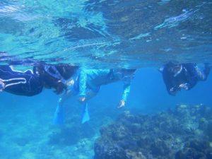石垣島は夏海の復活!穏やかな海広がるシュノーケリング日和です!