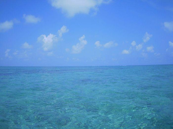 穏やかな海が続く石垣島です