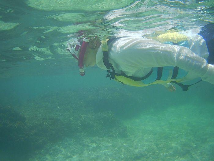 奥さん慣れてきたら、活発な泳ぎです