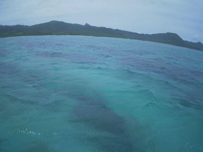 さぁ天気は曇りの石垣島、シュノーケリングツアー、再開です
