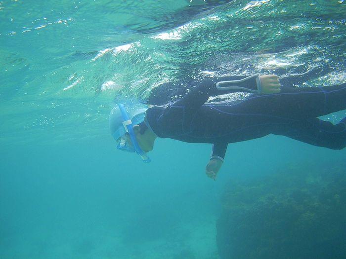 カエデちゃん、一人で泳ぎ始めています