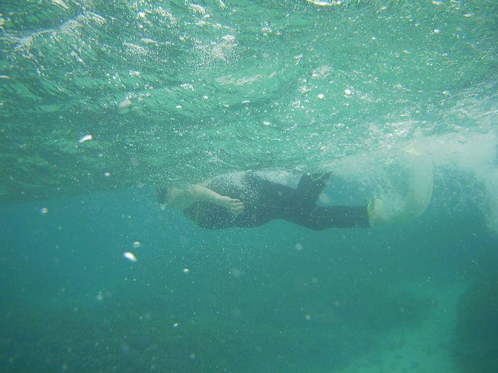 皆さんを心配しながら泳ぐN山さんです。