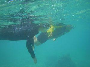 石垣島の海、透明度は抜群に復活、シュノーケリングは波あり手ごわいコンディション