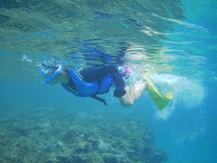 Bダッシュで泳ぎ回るケンシン君です