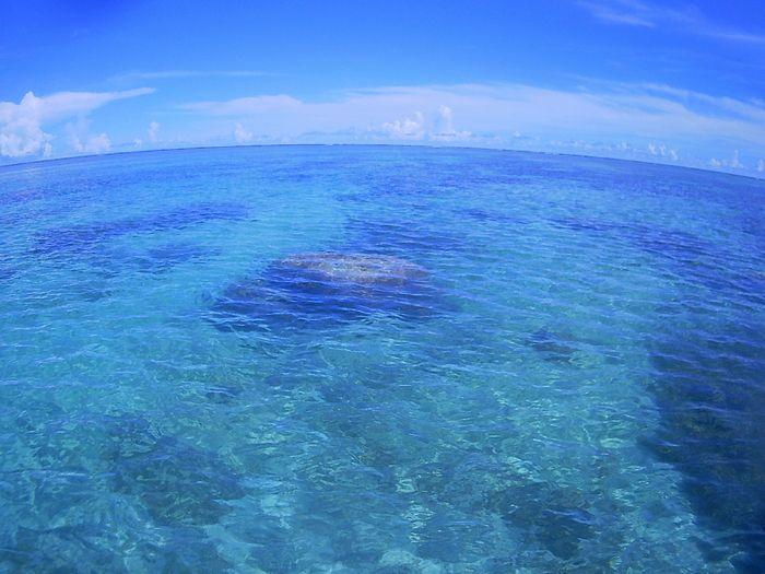 穏やかなすぎる海は快適シュノーケルです