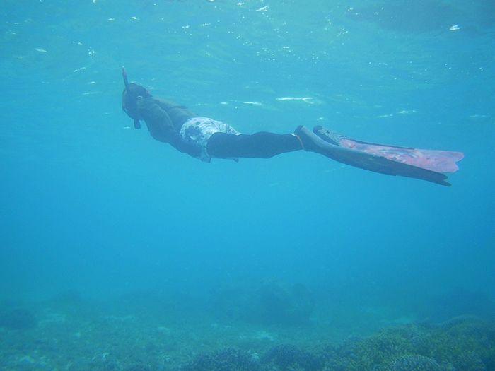 ロングフィンで潜っていますね