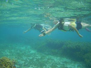 石垣島旅行最終日、初日にシュノーケル!最後の最後まで水中世界を満喫ツアーです!