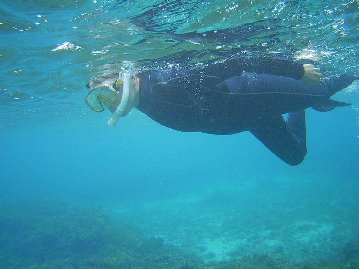 パワフルフィンキックでどこまでも泳ぎ続けています
