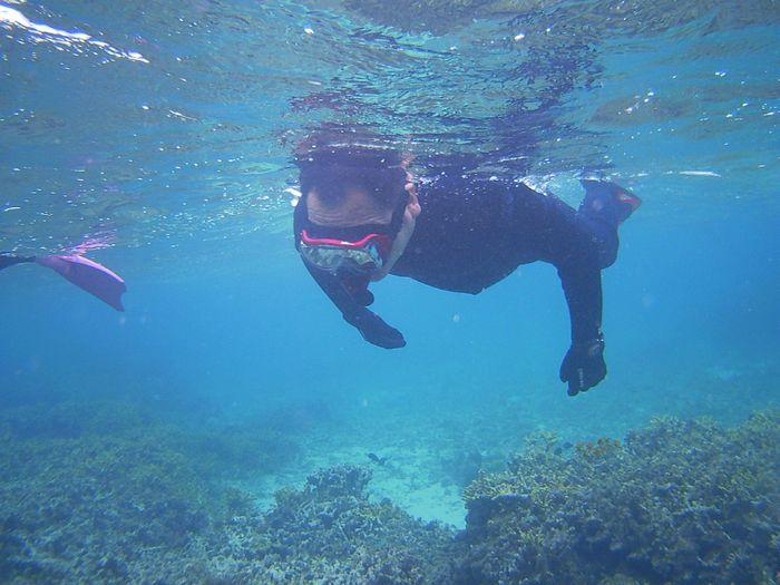 じっくり観察しながら泳ぐ旦那さんです