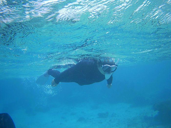 ガンガン泳ぎ回っています。
