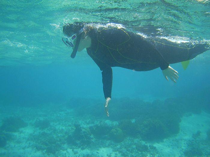 慣れてくれば水中世界没頭の奥さん