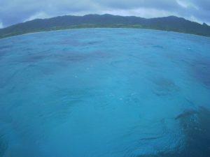 雨が降りそうな石垣島でもシュノーケルツアー!サンゴとお魚さんはいつも通りです♪
