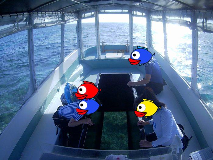 初石垣島のN島さんご家族です!