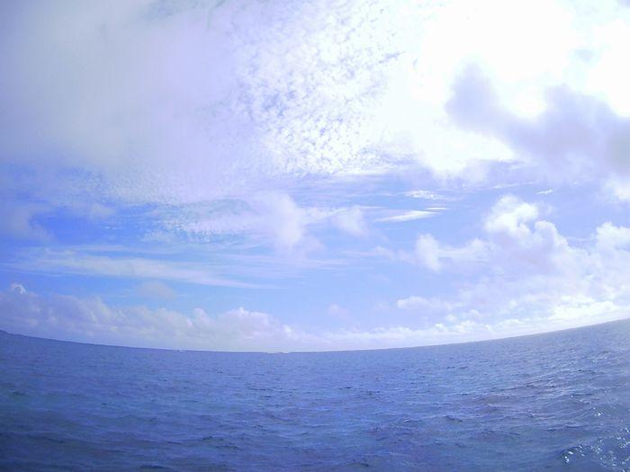 本日晴れ!となった石垣島です。