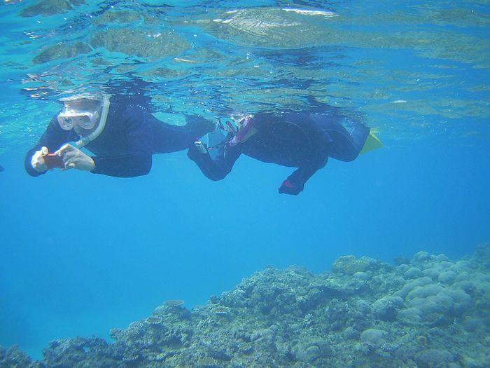 水中写真撮影、満喫です