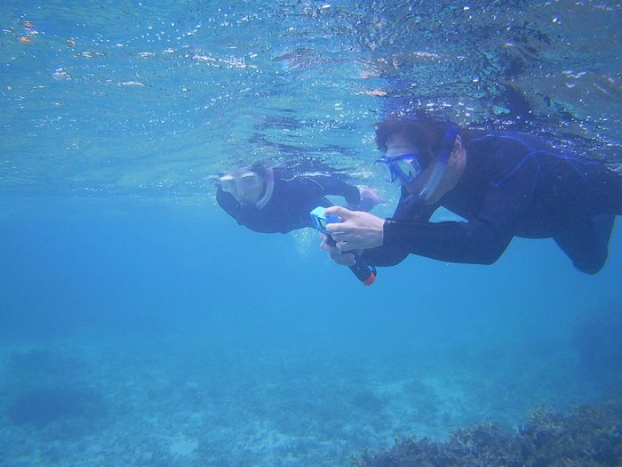 水中世界を満喫です