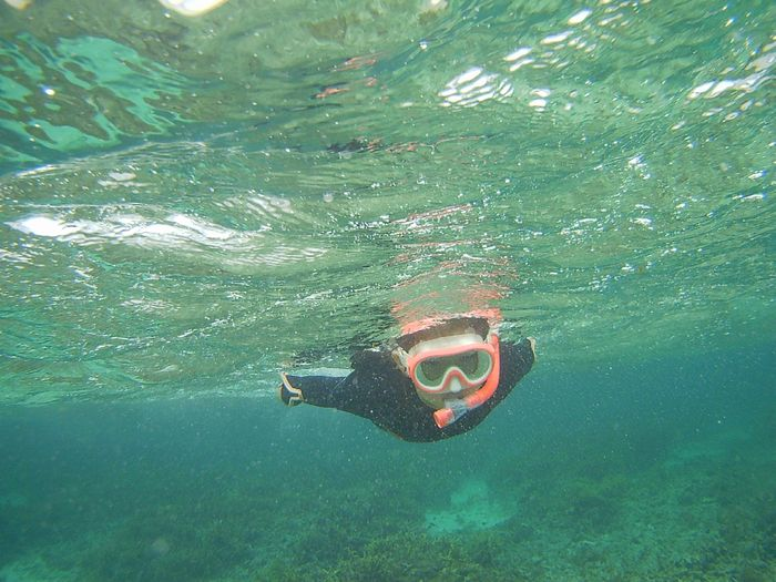 ヒナちゃん、無敵の泳ぎです。