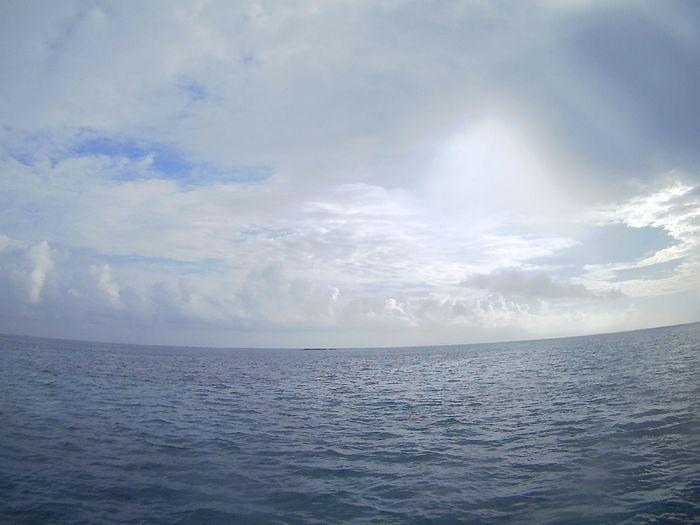 曇りの空模様からスタートの一日です