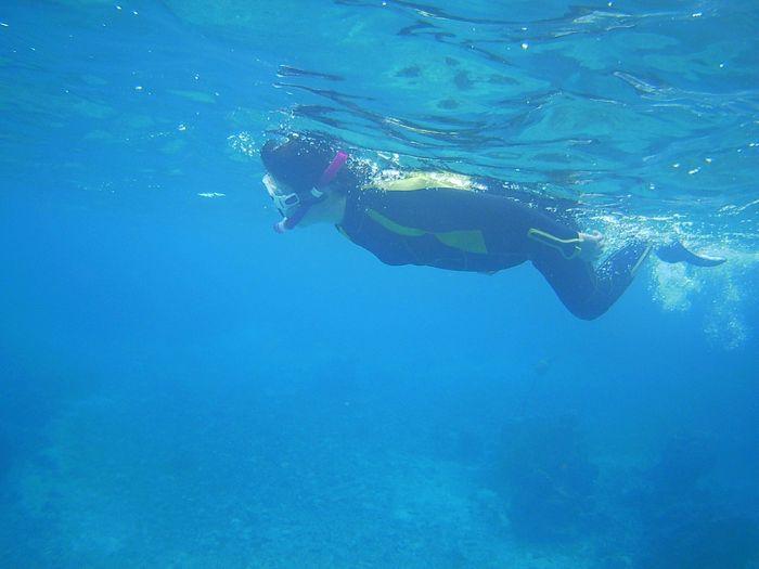 軽やかに泳ぐ奥さん