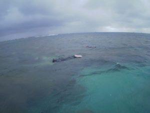 休日は海へ!石垣島移住チームのお二人、北部の海をシュノーケル