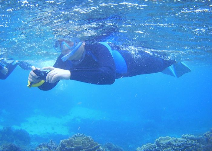 水中カメラで撮影