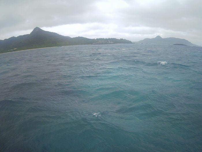 風はまだ強い石垣島です