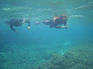 初石垣島の海をシュノーケル!小雨降っても水中はいつも通り♪