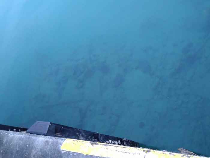 港の透明度が抜群