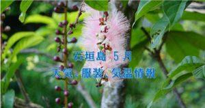 5月の石垣島天気,気温,服装,旅行,観光,アクティビティのプチブログ2021年